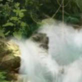 Скриншот из игры Рыбное место ® Новая эра.